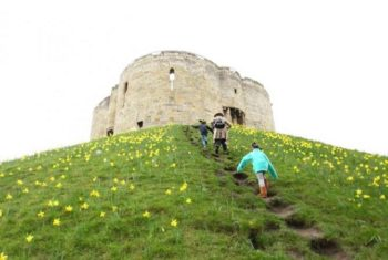 Add York to Your UK Road Trip Stopovers