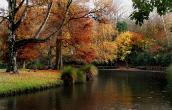 5 Electrifying Outdoor Activities You Should Try in Christchurch