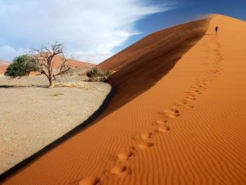 5 Reasons why Namibia should be Listed on your 2019 Travel Itinerary
