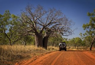 What to Expect From Kimberley Tours