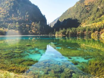 5 Reasons Why You Should Go On a Sichuan Tour